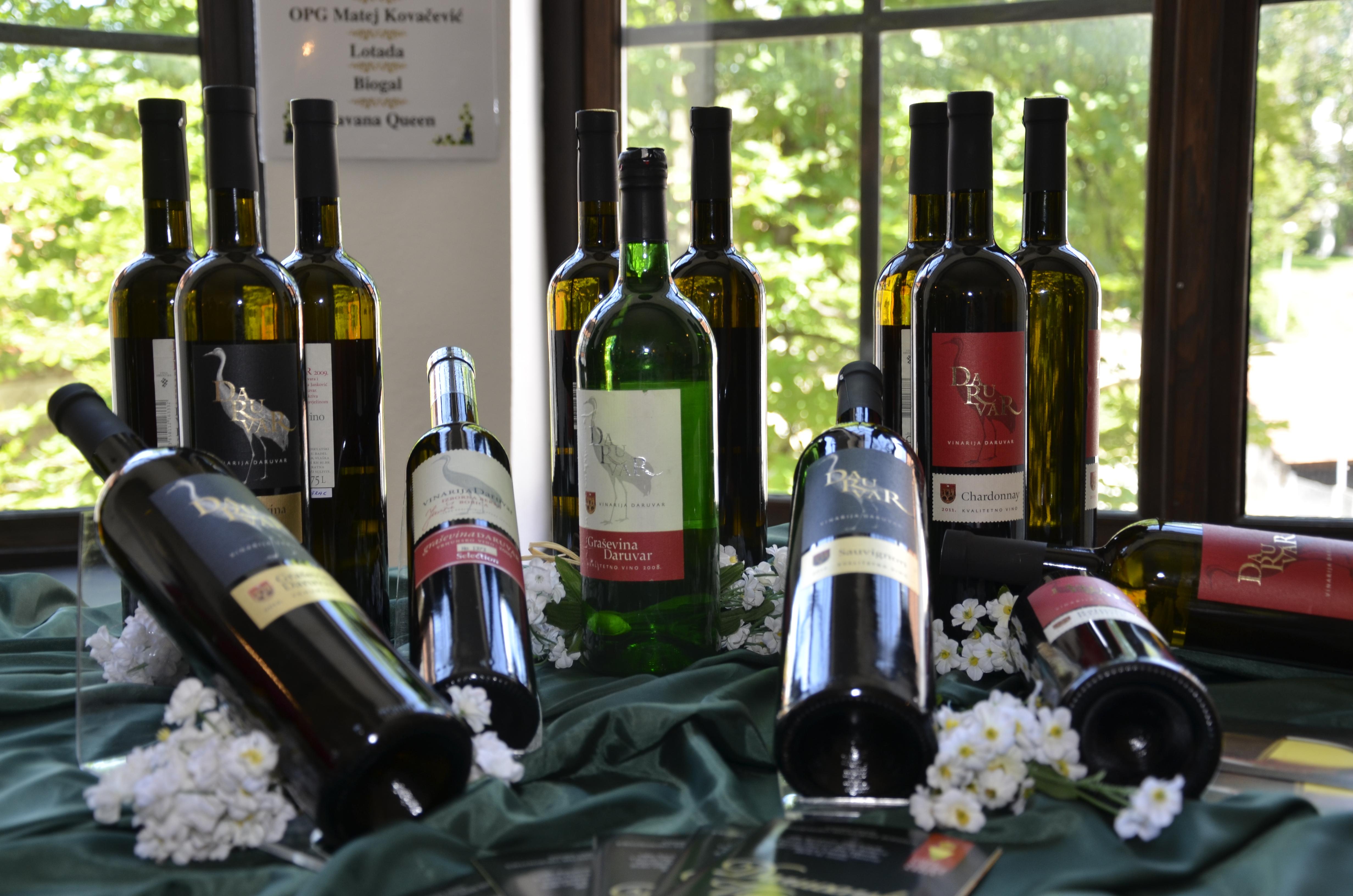 Vinodar - izložba vina